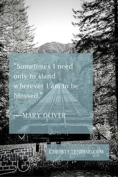 """""""Sometimes I need only to stand where I am to be blessed,"""" Mary Oliver from """"It Was Early"""" via www.christytending.com"""