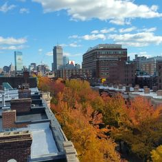 Boston University's historic and tree lined Bay State Road is stunningly beautiful in full color and bloom on this gorgeous Fall day on the Boston University Charles River Campus. (From left to right) John Hancock Tower Prudential Center Tower Citgo Sign &  Questrom School of Business all in view.  Photo courtesy of Daryl DeLuca @bumensrowing @bostonu @bostonattitude @bualumni @crbrotc @bostonufitrec @ssolworth @applytobu by daryl.deluca