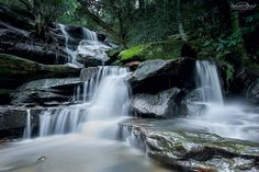 My take on the much photographed Lower Somersby Falls. for the heads up on the exposure issue. Luckily I had this shot bracketed. Waterfalls, Destinations, Outdoor, Beautiful, Outdoors, Outdoor Games, The Great Outdoors, Travel Destinations, Falling Waters