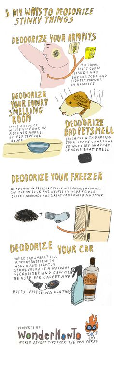 5 DIY Ways To Deodorize Stinky Things