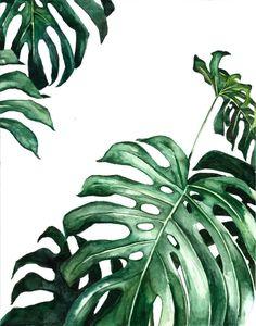 Plant Painting, Plant Drawing, Plant Art, Watercolor Plants, Watercolor Paintings, Watercolour, Botanical Wall Art, Botanical Prints, Lily Pulitzer Wallpaper