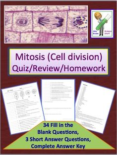 Short quiz or review activity on the stages of cell division.