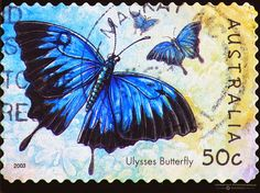 butterfly stamps - Google Search