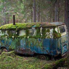 Moss-covered ruins of a VW bus in a forest Abandoned Buildings, Abandoned Houses, Abandoned Places, Abandoned Vehicles, Abandoned Ships, Abandoned Mansions, City Buildings, Volkswagen Bus, Vw T1
