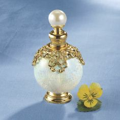 Abalone Perfume Bottle - Furniture, Home Decor and Home Furnishings, Home Accessories and Gifts | Expressions