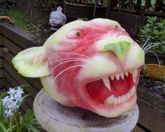 Here kitty kitty.  Watermelon carving by Clive Cooper