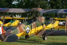 Tiger moth i got to fly in one these when I was 10. Never will forget it.