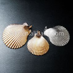 WT-JP004 Latest in stock natural beach shell with full high