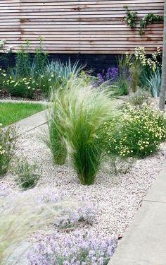 Front yard – Birgit Kröbl-Eckstein - All For Garden Home Landscaping, Front Yard Landscaping, Small Gardens, Outdoor Gardens, White Pebble Garden, Landscape Design, Garden Design, No Grass Backyard, Gravel Garden