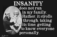 Insanity   Laughter For You