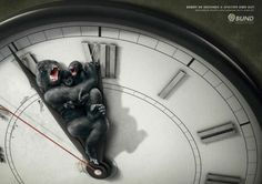 Powerful Animal Ad Campaigns #WWF #advertising #design #ads #animal