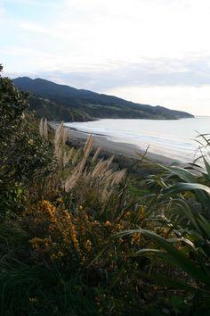 Raglan, West Coast, North Island, New Zealand