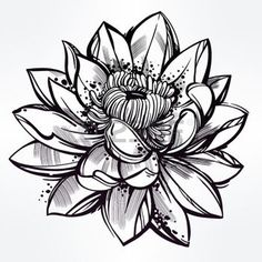 tatouage fleur: Vector set of hand drawn fleur de lotus. Lily motif, tatouage élément de design. concept art Bouquet. Isolated illustration de vecteur dans le style d'art en ligne.