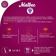 Delicioso Malbec a nuestros pies! Ninguno como el Argentino!