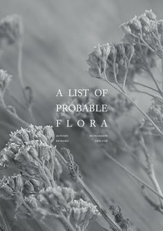 RICHARD SKELTON and AUTUMN RICHARDSON Cover of A List of Probable Flora pamphlet, 2013.