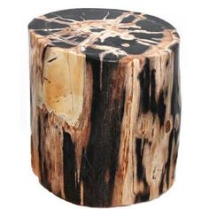The ultimate organic modern accent, this petrified wood stool can be used for seating or as a side table in your living room or bedroom.Natural grain markings featured in these primarily black polishe Log Stools, Tree Stump Table, Plant Fungus, Wood Stool, Petrified Wood, Fossilized Wood, Beautiful Rocks, Wood Creations, Rocks And Gems