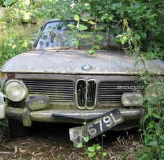 Poor little BMW 2002, know of one in a similar state of neglect. And a E9 that's rusting away on a private property, shame as I need to investigate whether it's a CSL or not, where it's rusting suggests it is.