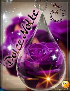 Bellissime Immagini per Augurare Buonanotte su Facebook e Whatsapp da immagini-buonanotte.it Hindi Good Morning Quotes, Night Quotes, Italian Greetings, Italian Quotes, Purple Roses, Lava Lamp, Good Night, Christmas Bulbs, Facebook