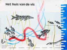 Het huis van de vis 31.8 x 42.8 cm linosneden en roltechniek, boekdruk Opdracht, particulier