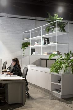 Unnamed Company Office by Tom Robertson Architects - Office Snapshots Open Concept Office, Open Office Design, Office Interior Design, Office Interiors, Open Space Office, Workspace Design, Office Workspace, Agency Office, Office Fit Out