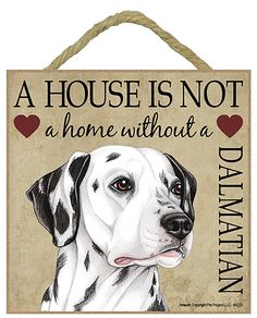 "Dalmatian. Great 5"" x 5"" 'House is not a Home' Plaques. You can hang it on your wall or if you prefer not to drill holes in your wall there is an easel on the back and you can stand the plaque on your shelf or bedside table. Many breeds available from www.car-pets.co.uk Just £8.95 each."