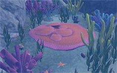 Coral Reef from TS3 Island Paradise