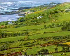 Ring of Kerry, Ireland | David Stern Photography