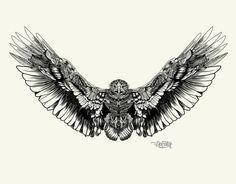 Águila Real / Golden eagle by Carlos Zavala el Docotor, via Behance