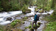 Einführungswanderung durch die Wildes Wasser #untertal #wildewasser #schladming National Geographic, Wilde, Waterfall, Outdoor, Tourism, Water, Outdoors, Waterfalls, Outdoor Games