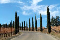 Uncorked Wine Travels explores Castello di Amorosa