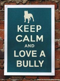Love a Bully.