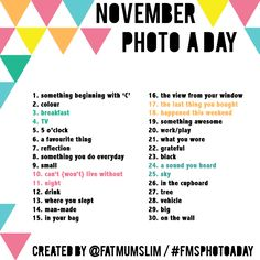 November Photo A Day Challenge from Fat Mum Slim - she has a good photo challenge every month.