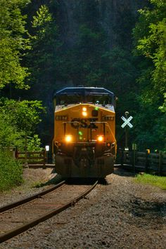 CSX Train at the Natural Tunnel Sate Park in Duffield Va,