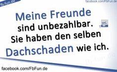 fb-pinnwandbild-freunde-dachschaden.jpg (250×154)