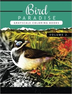 Amazon.com: Bird Paradise Volume 2: Bird Grayscale coloring books for adults Relaxation Art Therapy for Busy People (Adult Coloring Books Series, grayscale fantasy coloring books) (Bird Paradise Coloring book) (9781535157162): Grayscale Publishing: Books