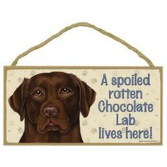 "Chocolate Labrador Lab Dog Sign Plaque 10/""x5/"" House not Home Spoiled Love Advice"