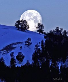 Moon in Lamar Valley, Yellowstone National Park, Wyoming