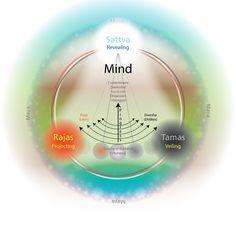Initiate Ayurveda ~ into your life: The 3 Gunas: Satva   Rajas   Tamas