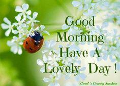 Good morning via Carol's Country Sunshine on Facebook...:)