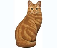 Orange Tabby Doorstop (new design) (Cat Products) by Fiddler's Elbow. $25.39. Silk-screened on 100% cotton, stuffed with polyfil and weighted with plastic pellets.