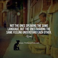 Not the ones speaking the same language but the ones sharing the same feeling understand each other. _Rumi_