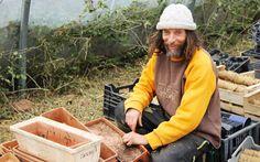 Tomates bio, sans pesticide et sans eau: le secret de Pascal Poot