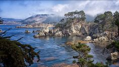 http://saveourshores.org/wp-content/uploads/2014/04/Point-Lobos-Denis-Lincoln.jpg