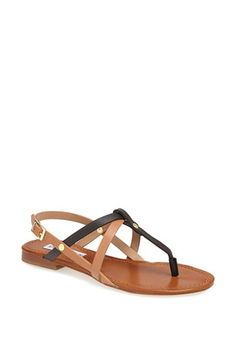 leather sandal / steve madden