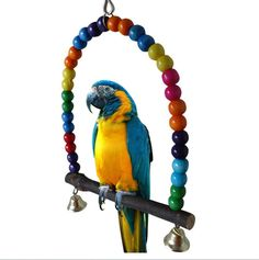 [Visit to Buy] Colorful Pet Bird Toys Parrot Parakeet Cockatiel Finch Lovebird Budgie Cage Swing Toy With Bell Chew Toys Pets Birds Accessories Parrot Pet, Parrot Toys, Parrot Bird, Parrot Cages, Bird Cages, Bird Feeders, Cockatiel Toys, Budgies, Hamster Toys