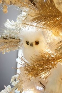 Owl decor for the winter  December 2012