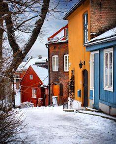 Visit Oslo, Visit Norway, Bergen, Norway Winter, One Day Trip, Winter Wallpaper, Winter Scenery, Winter Photos, Travel Abroad