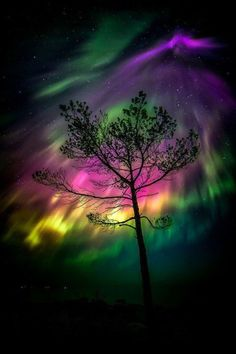 Aurora Borealis - The Northern Lights. A beautiful mixture of colors in the sky. All Nature, Science And Nature, Amazing Nature, Beautiful Sky, Beautiful Landscapes, Beautiful Places, Belle Photo, Night Skies, Pretty Pictures