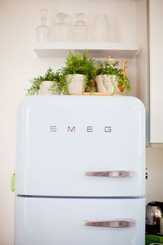 Love this idea for fake plants and blonde wood above a white fridge--top of the fridge is always an ugly place and this brightens up the small space!
