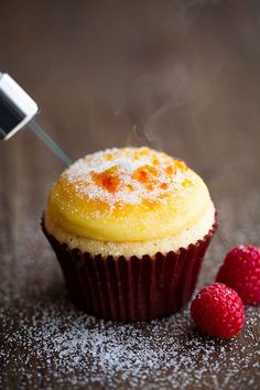 Creme Brulee Cupcakes by Cooking Classy are real proof that cupcakes can be really fancy dessert. Delicious cupcakes topped with vanilla bean pastry cream, Köstliche Desserts, Delicious Desserts, Dessert Recipes, Yummy Food, Alcoholic Desserts, Plated Desserts, Think Food, Love Food, Mini Cakes